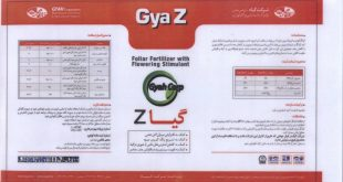 gyah_z_po